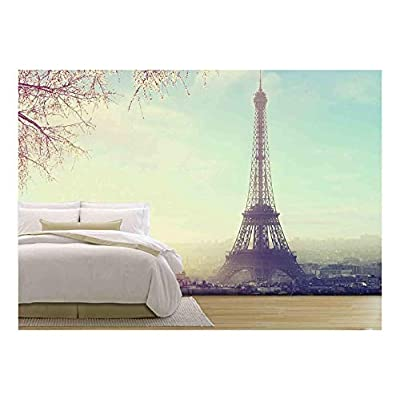 Classic Artwork, Amazing Visual, Aerial View of Paris Cityscape with Eiffel Tower at Sunset Vintage Colored Picture Business Love and Travel Concept