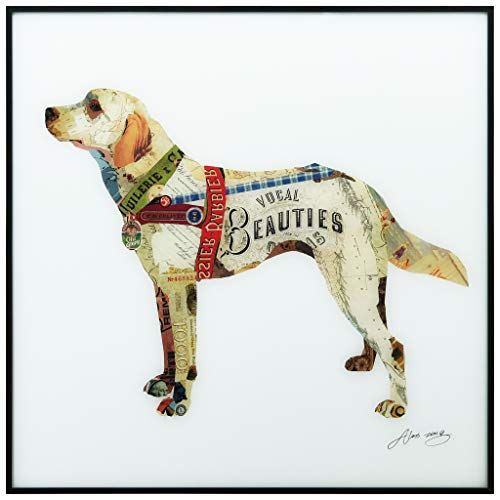 Empire Art Direct Labrador Retriever Wall Art,Reverse Printed Glass and Anodized Aluminum Black Frame Contemporary,Ready to Hang,Living Room,Bedroom & Office, 24 in. x 1 in. x 24in, White,Yellow ()