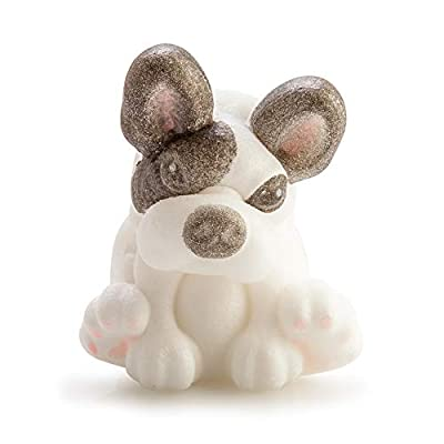 Boxer Gifts Grow Your Own French Bulldog Toy | Just Add Water | Great Fun For Children | Perfect Gift For Dog And Puppy Lovers: Kitchen & Dining