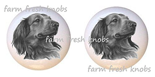 SET OF 2 KNOBS - Long-haired Dachshund Dog - Dogs - DECORATIVE Glossy CERAMIC Cupboard Cabinet PULLS Dresser Drawer KNOBS