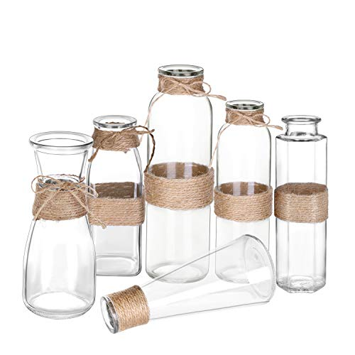 MoonLa Glass Vases Clear Flower Bud Vase in Differing Unique Shapes Creative Rope Design - Set of 6