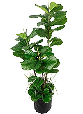 "GARDEN COUTURE Deluxe 66"" Premium Fiddle Leaf FIG Artificial Tree + Fiddle Leaf and Tropical Grass Foliage in 8"" Base + 12"" Plant Pot Skirt."