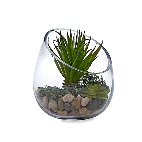 Slant Top Terrarium with Faux Succulents l Faux Succulents Stones and Pebbles in this Terrarium (Airline Tickets To Florida compare prices)