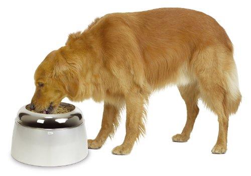 Dogit 73660 erhöhter Futternapf für große Hunde, 2.5 L
