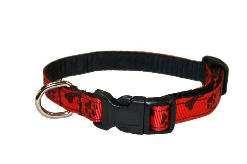 Sassy Dog Wear 6-12-Inch Paws and Bones/Poppy Dog Collar, X-Small