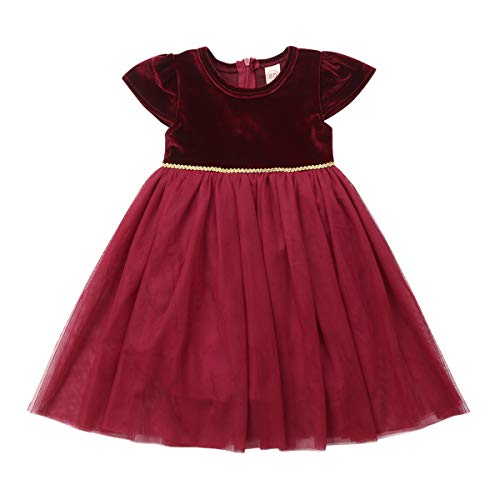 Zoey's DreamHouse Baby Girls Birthday Party Red Velvet Dress Christmas Mesh Princess Dress (100/2-3 Years) by Zoey's DreamHouse