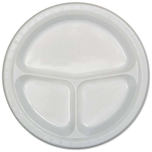 (Creative Converting 019992 20 Count Touch of Color Plastic Banquet Plate, 10.25