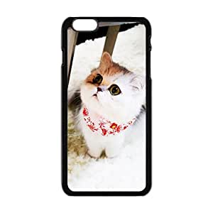 """Lovely little white cat Case for iPhone 6 plus 5.5"""""""