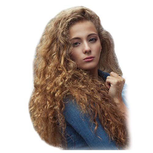 Inkach Clearance Long Wavy Lace Front Unit Wigs for Black Women Afro Kinky Curly Full Wigs with Baby Hair Wig Heat Resistant Synthetic Fiber Female Costume Party Wig (24inch, Curly Wig) ()