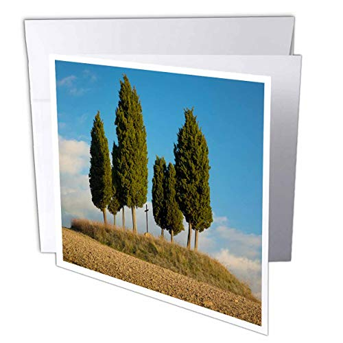 3dRose Danita Delimont - Tuscany - Tree Circle and Memorial Cross on Hill, Tuscany, Italy - 6 Greeting Cards with envelopes (gc_313694_1)