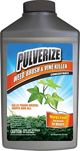 Pulverize PWBV-C-032, Brush & Vine Killer Concentrate Fast Acting, Non-Staining Weed Vine, 32 Ounce, Crabgrass
