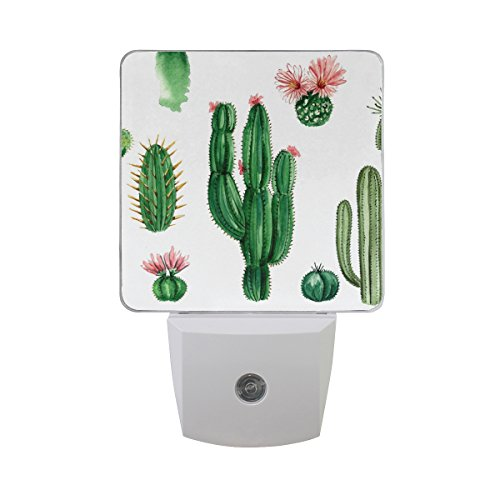 Naanle Set of 2 Watercolor Cactus Succulent White Natural Auto Sensor LED Dusk to Dawn Night Light Plug in Indoor for ()