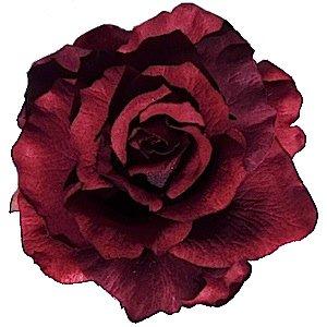 Fleur pour cheveux , Rose classique bordeaux