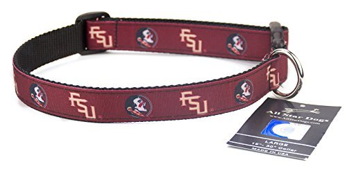 All Star Dogs Florida State Seminoles Ribbon Dog Collar - Medium