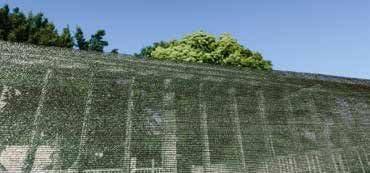 Catral 53010045 - Malla Sombreo ocultación, Verde Oscuro, 5000 x 3 x 200 cm: Amazon.es: Jardín