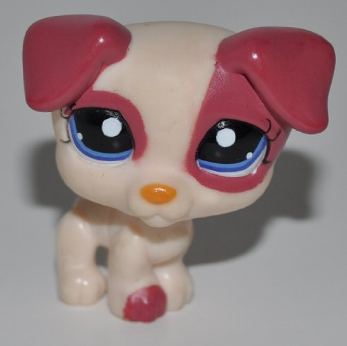 lps jack russell - 7