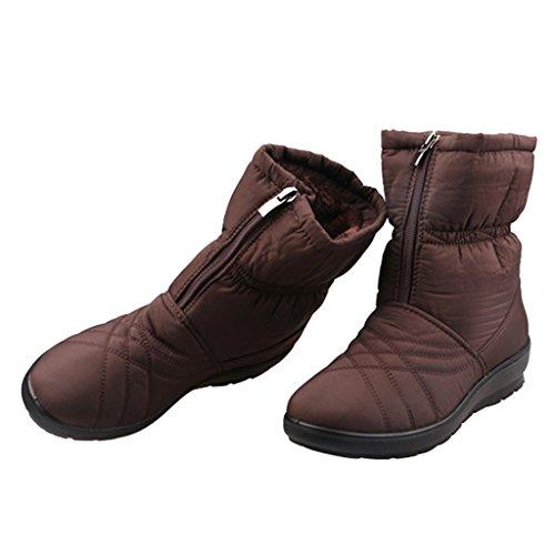 Cher Temps Femmes Hiver Bottes De Neige Chaud Chaussures De Cheville De Plate-forme De Coton Brun