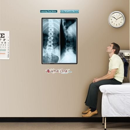 X-ray Spine - 7
