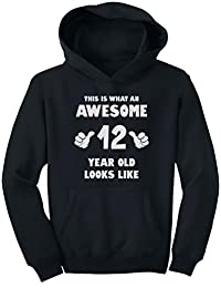 TeeStars - This is What an Awesome 12 Year Old Looks Like Youth Hoodie
