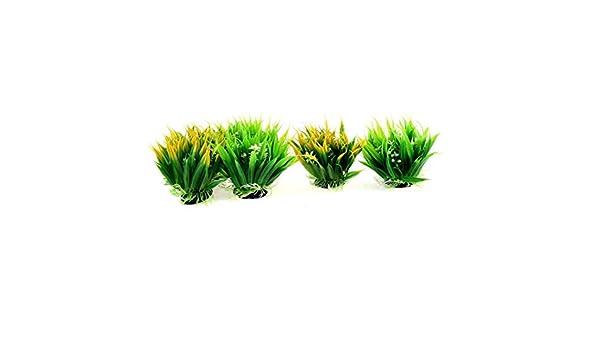 Amazon.com : eDealMax acuario plástico Detalle Flores plantas submarinas Hierba Oranment 6pcs : Pet Supplies