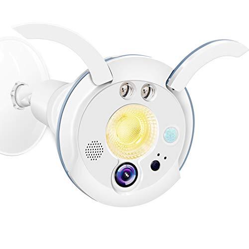 Sengled Floodlight Camera with Motion Sensor Light