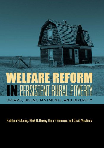Welfare Reform in Persistent Rural Poverty: Dreams, Disenchantments, And Diversity (Rural Studies)