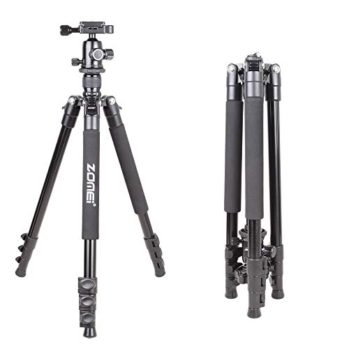 (ZOMEi Q555 Lightweight Alluminum Alloy Camera Tripod with 360 Degree Ball Head + 1/4
