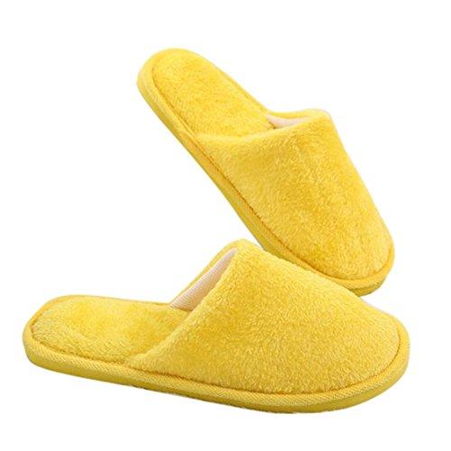 Chaussons Pantoufle Coton Pantoufles Douce en Sfit Peluche Mules en qY1UfRw