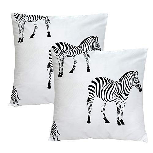 TEALP Throw Pillow Cover Black Zebra Print in White Square 18x18 inch ()