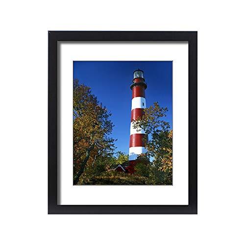 Media Storehouse Framed 20x16 Print of USA, Virginia, Assateague Island, Chincoteague National Wildlife (11186140)