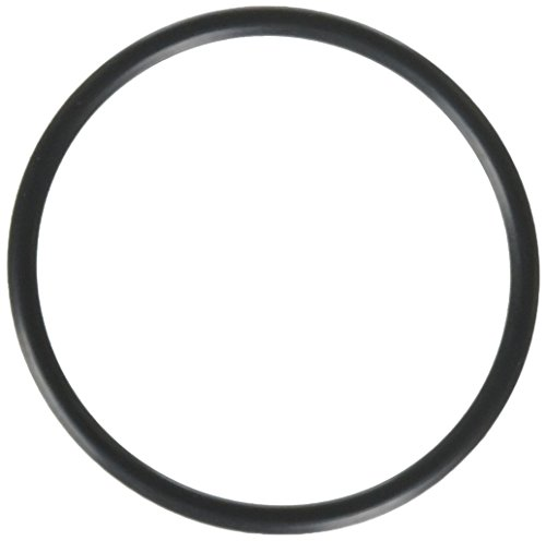 Hayward SPX1495Z1 Union O-ring
