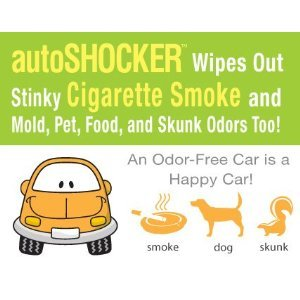 auto shocker clo2 car interior odor eliminator pet supplies. Black Bedroom Furniture Sets. Home Design Ideas