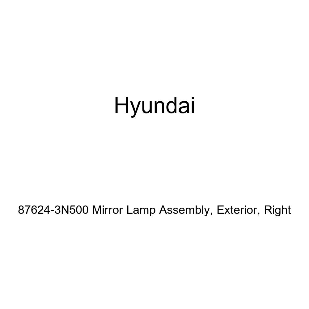 Genuine Hyundai 87624-3N500 Mirror Lamp Assembly Exterior Right
