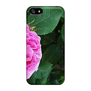 Fashion KTZ2663tTDC Case Cover For Iphone 5/5s(sunday Street) by icecream design