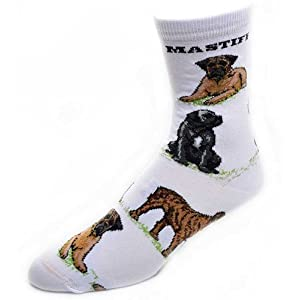 For Bare Feet-Mastiff Dog Adult Poses Socks (White), Medium 2