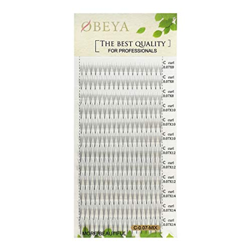 0.07mm 3D W C Curl 8-14mm Mix Length Premade Volume Fans Eyelash Extensions False Fake Individual Lashes Clusters Soft Natural Eyelash Extension Supplies for Professionals by OBEYA