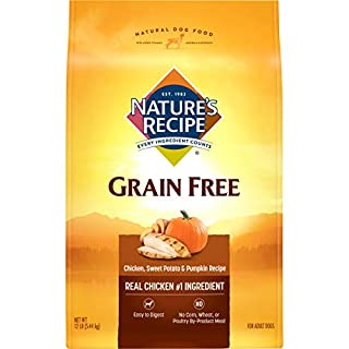 Nature's Recipe Grain Free Dog Food, Chicken, Sweet Potato & Pumpkin Recipe, 12 Pounds, Easy to Digest