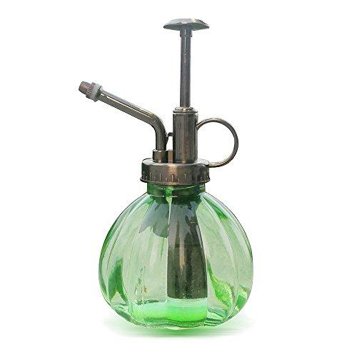 Spray Vintage Bottle - Ebristar Plant Mister, Glass Watering Spray Bottle, 6.5