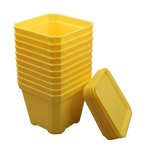 BangQiao 3.90 Inch Sturdy Plastic Nursery Pots for Plants,Cutting,Seedlings, Pack of 10 (yellow) (Yellow Seedling)