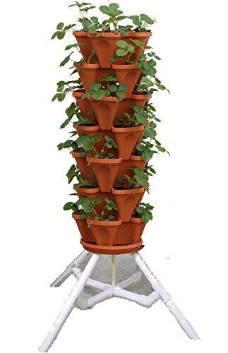 Amazoncom Vertical Gardening Vegetable Tower Indoor Outdoor