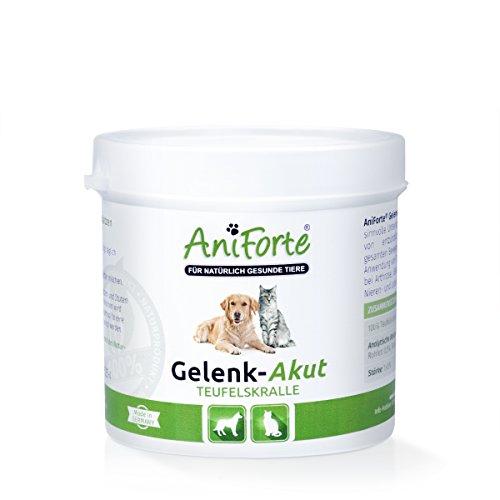 AniForte Teufelskralle Gelenk-Akut 100 g- Naturprodukt Hunde und Katzen
