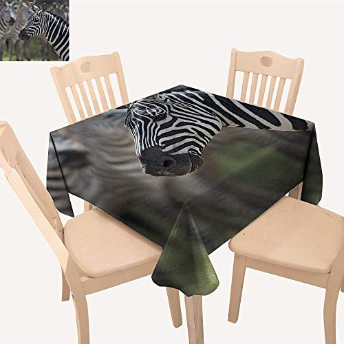 African Outdoor Picnics Zebra in Serengati National Park Safari Animal in Desert Picture Table Cloth Cover Black White Reseda Green W 70
