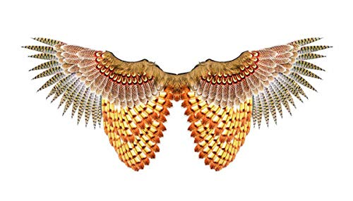 Adult Size Non Feathered Owl Wings - Costume Accessory]()