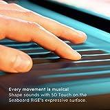 ROLI Seaboard Rise 49 49 Key Keyboard Controller