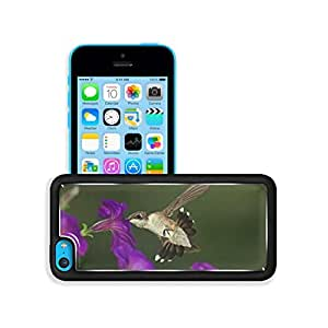 Purple Flower Nature Birds Hummingbird iPhone 5C Case Customized niuniu's case