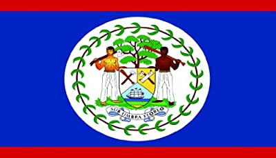 SeaSense Belize Boat Flag