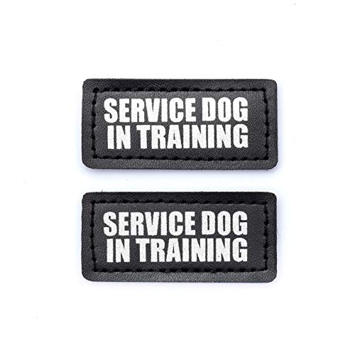 Industrial Puppy Hook Patches for Harness - Service Dog, Emotional Support, in Training, Service Dog in Training, and Therapy Dog Patches