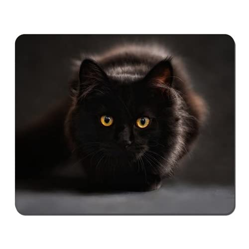 Black Cat Mousepad,Gaming Mouse Pad (10.2x8.2 inches) high-quality