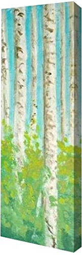 "Vibrant Birchwood I by Walt Johnson - 6"" x 20"" Gallery Wrapped Giclee Canvas Art Print - Ready to Hang"