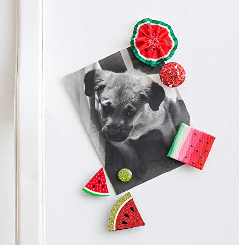 Refrigerator Magnets - Decorative Fridge Magnet Set - 6 Fridge Magnets for Cabinets, Whiteboards & Lockers - Colorful Magnets for Gift, Home Decor & Practical use - Watermelon Delight (Magnets Watermelon)